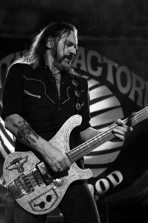 Lemmy Kilmister HeadCat