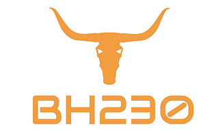 BH230 Logo.png