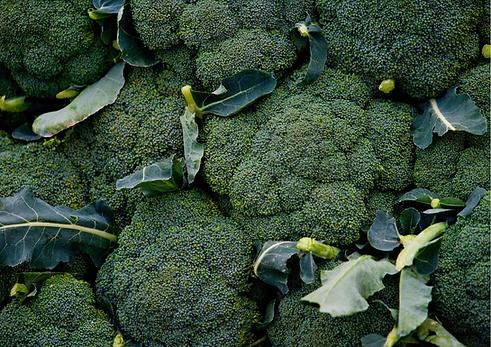 brocolli fresh frontier.png