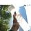 Thumbnail: Garrafa de água de vidro de 350ML