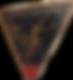 Insigne%2036e_edited.png