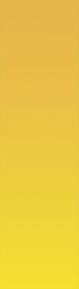 Yellow_Strap_01.jpg