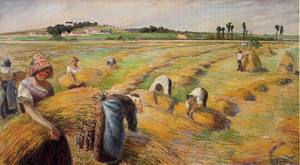 Peasants harvesting wheat