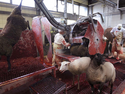 The meatpacking industry; or, hell on earth