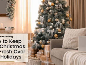 How to Keep Your Christmas Tree Fresh Over the Holidays