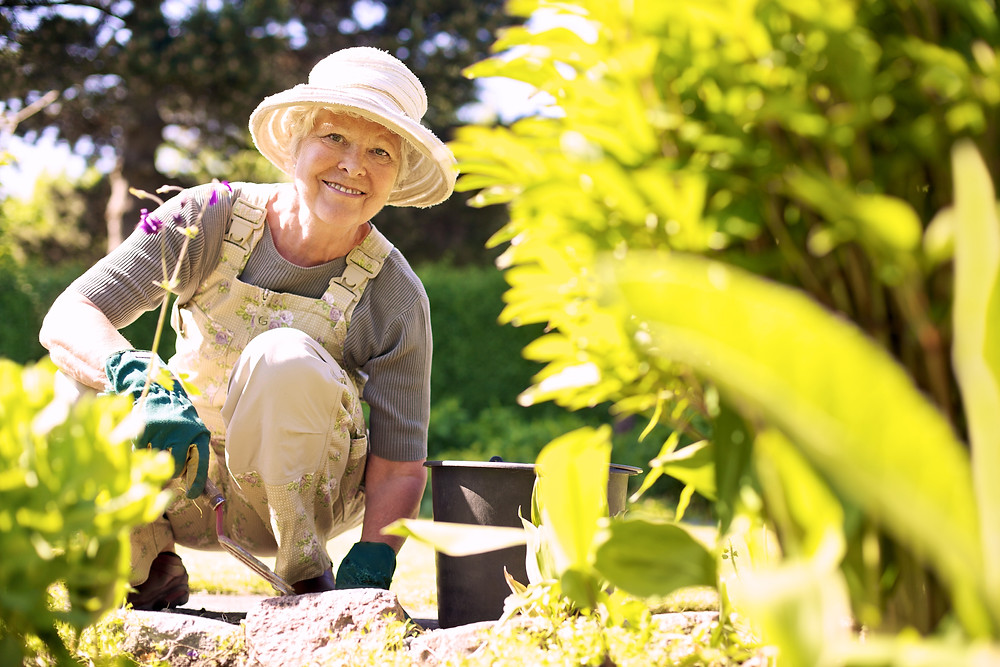 A senior taking part in gardening