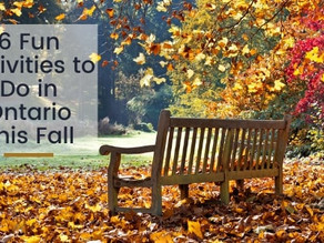 6 Fun Activities to Do in Ontario This Fall