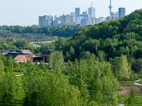 The 9 Best Hiking Trails in Toronto and the GTA