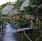 Jungle-Adventure-Resort-in-Belize.webp