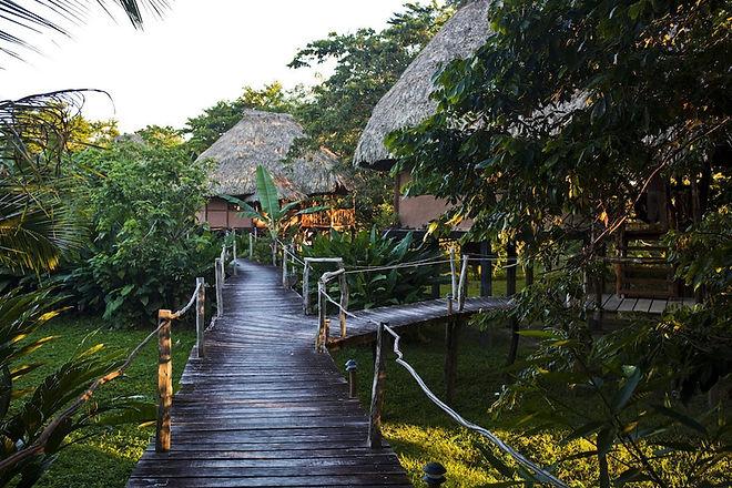 Jungle-Adventure-Resort-in-Belize.jpg
