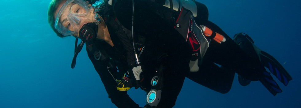 divermojo-merlin- diving.jpg
