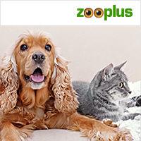 200x200_zooplus_nl_katten.jpg