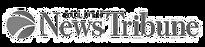 Duluth-News-Tribune-Logo.png