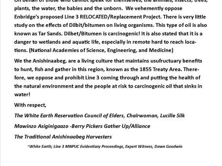 Line 3 Appeal Resumed