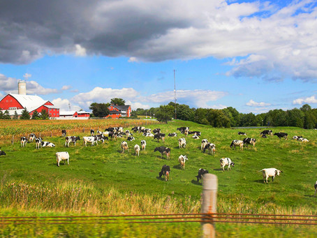 Minnesota Farm Land Deduction Offers Estate Planning Opportunities for Farmers