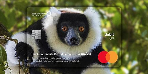 Mastercard anlamlı bir projeye daha imza atıyor