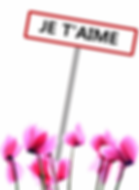 fleurs st valentin.png