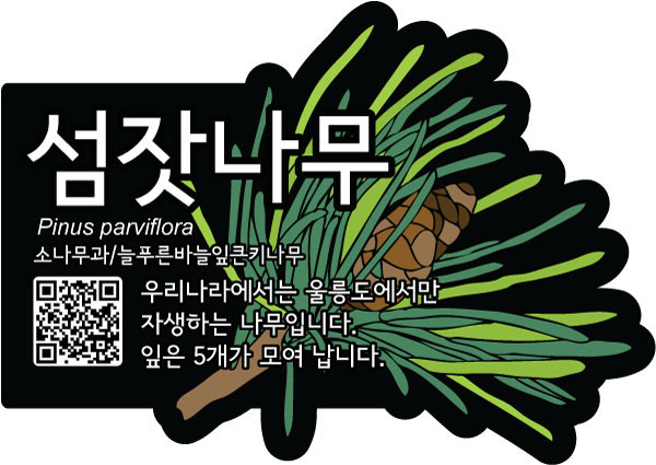 식물이름표