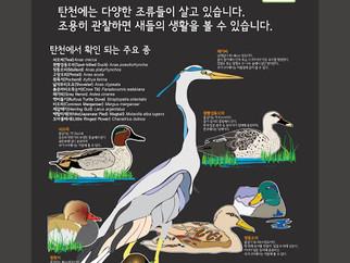 탄천의 새들 _ 자연해설판