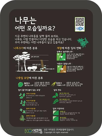 자연해설_나무는 어떤 모습? 450*600