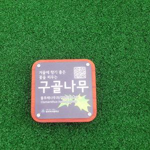 PC0302 적삼목 + PC + UV배면인쇄