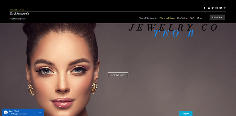 Dragan Jakovljevic Professional Website