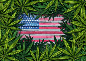 3 Canadian Cannabis Stocks With the Best U S  Strategies