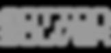 MoSoStudio Logo_g.png