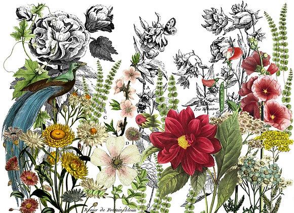 IOD Decor Transfer - Midnight Garden