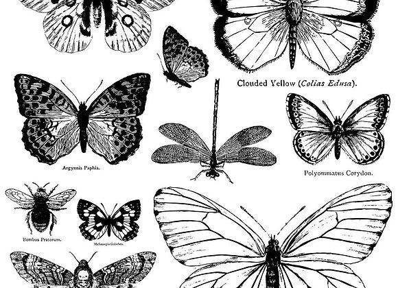 """IOD Decor Stamps - Butterflies 12"""" x 12"""""""