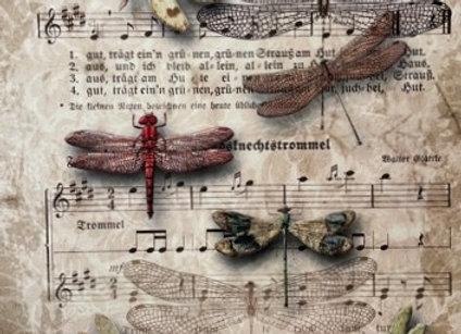 Dragon Flies and Music - Medium