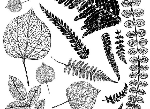 "IOD Decor Stamps - Fronds 12""x 12"""