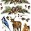 Thumbnail: Woodland Christmas