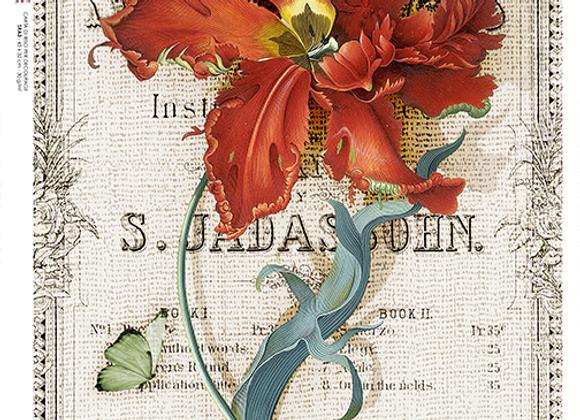 Flower 0356 - Small
