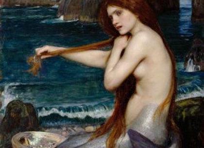 Posh Mermaid