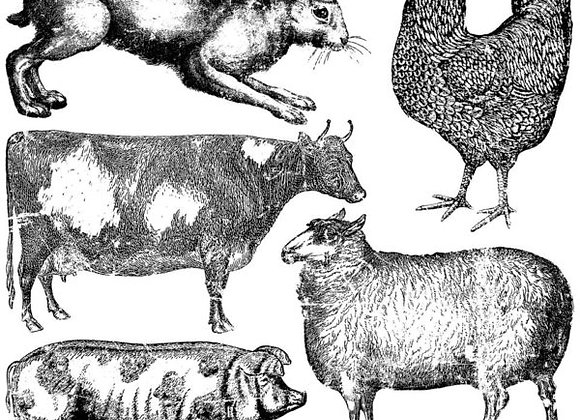 "Farm Animals 12"" x 12"" Decor Stamp™"