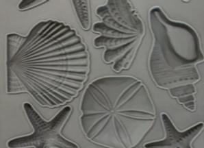 Seashells Mould