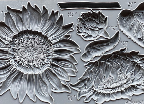 Sunflower Mould