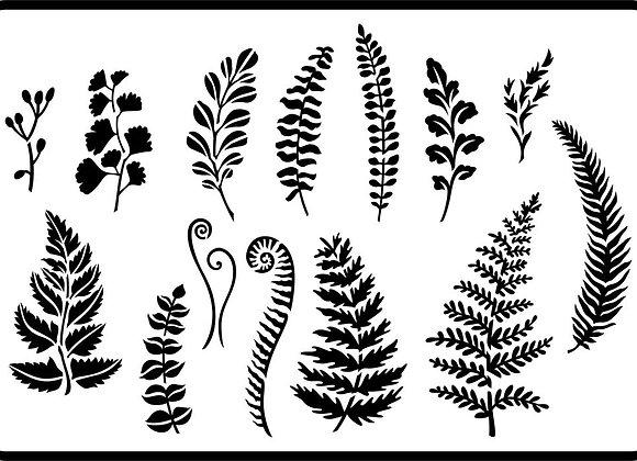 JRV Ferns And Greenery