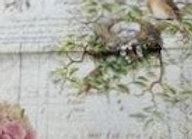 #23 Decoupage Paper - Birds