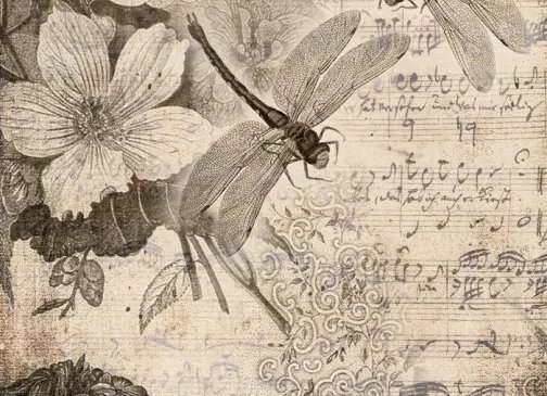 #53 Musical Dragonfly