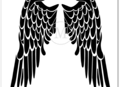 Angle Wing - Medium Pair