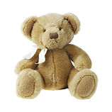 Teddy Bear can be placed in coffin