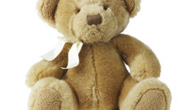 Share the Love with Teddy Bears