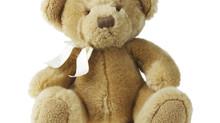 Share the Love with Teddy Bears