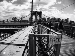 emilia_ułanowicz_fotografia_new_york_03
