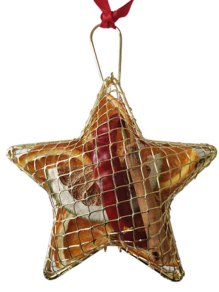Hanging Metal Mesh Star (3 colours available)