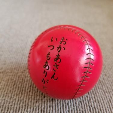 野球記念品|木製ボール|還暦