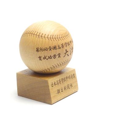 木製ボール/育成功労賞