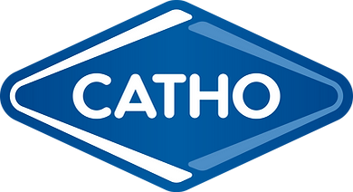 Cases de sucesso PUC Júnior Consultoria Catho